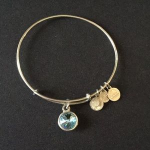 Jewelry - Alex and Ani Bangle Bracelet